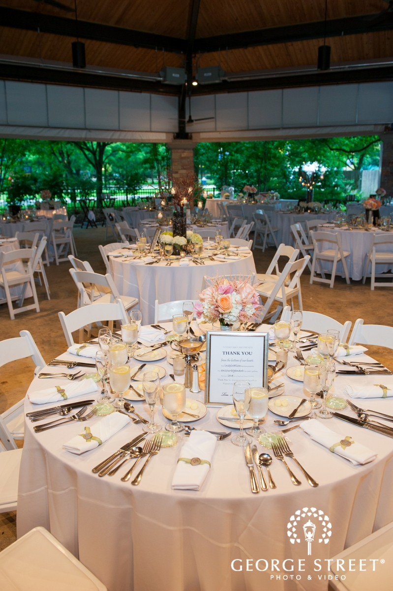 Brookfield Zoo Wedding Photographer George Street Photo Video