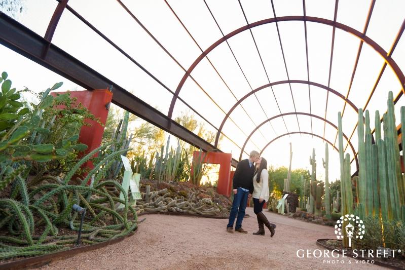 desert botanical gardens outdoor portrait - Desert Botanical Garden