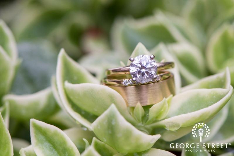 Home · Wedding Photographer · St Louis · Missouri Botanical Garden