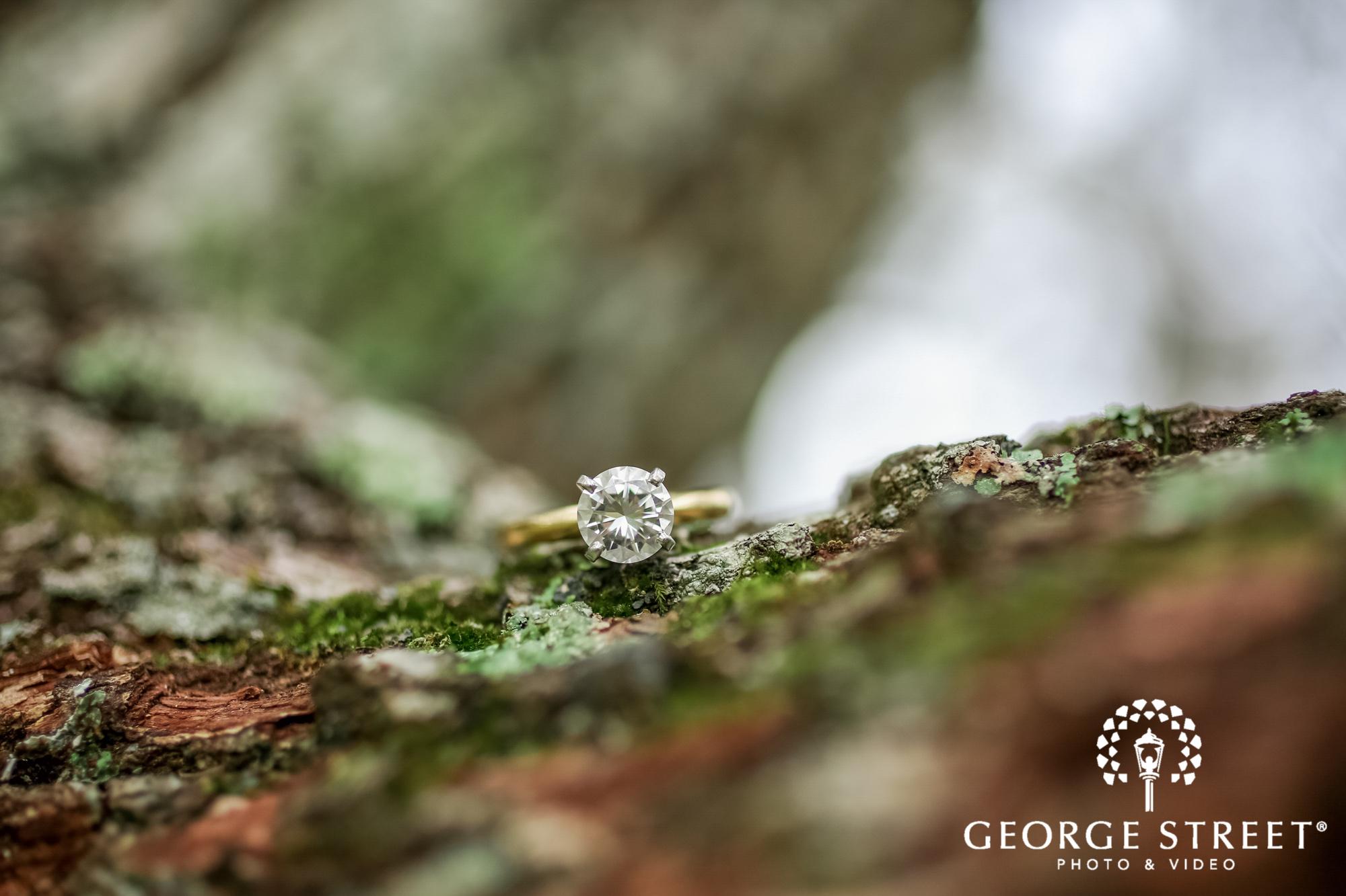runnymede plantation elegant ring charleston engagement photography 2