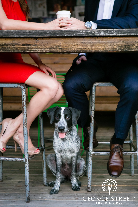 dog engagement portraits