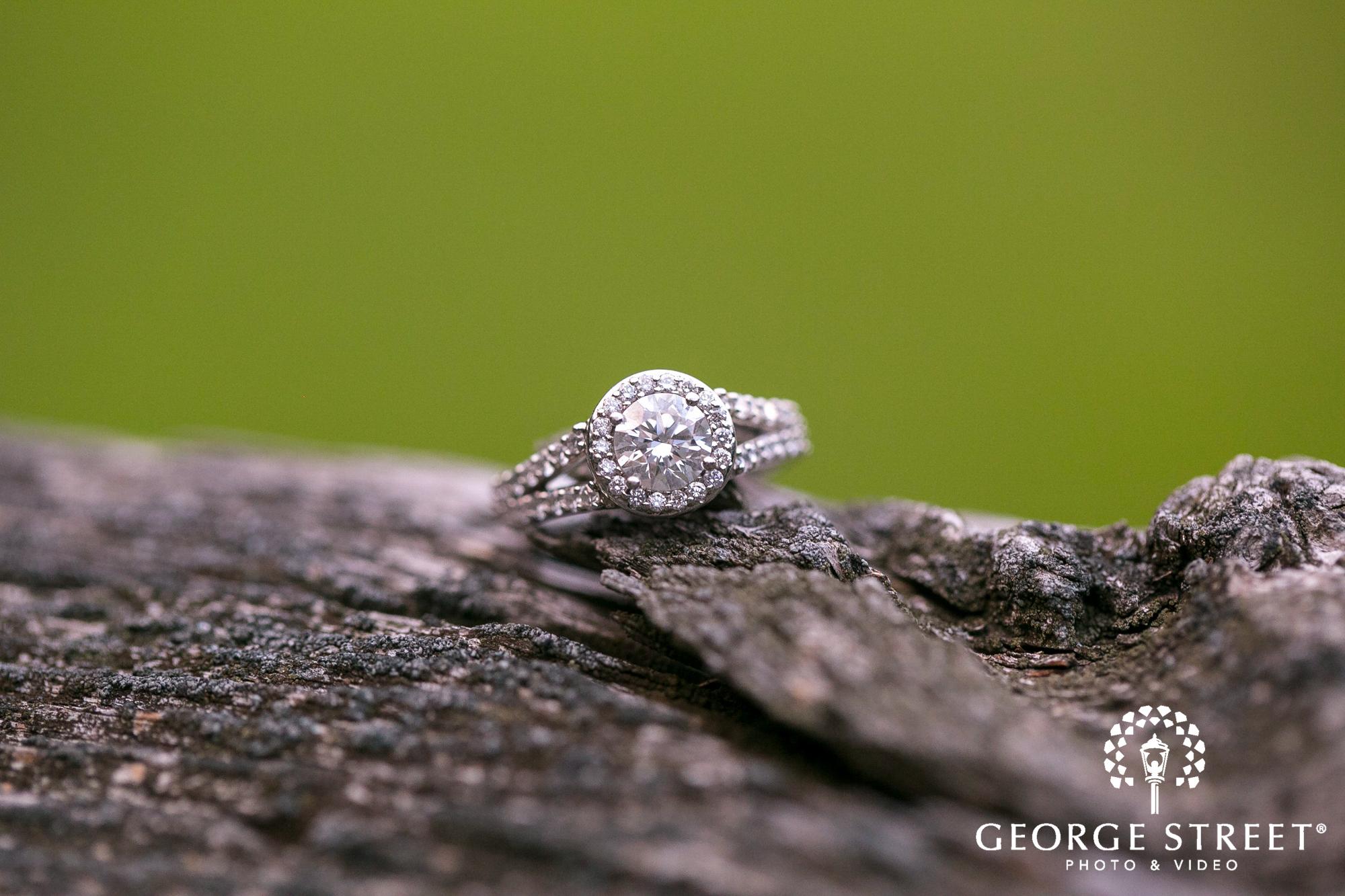 beautiful engagement ring portrait