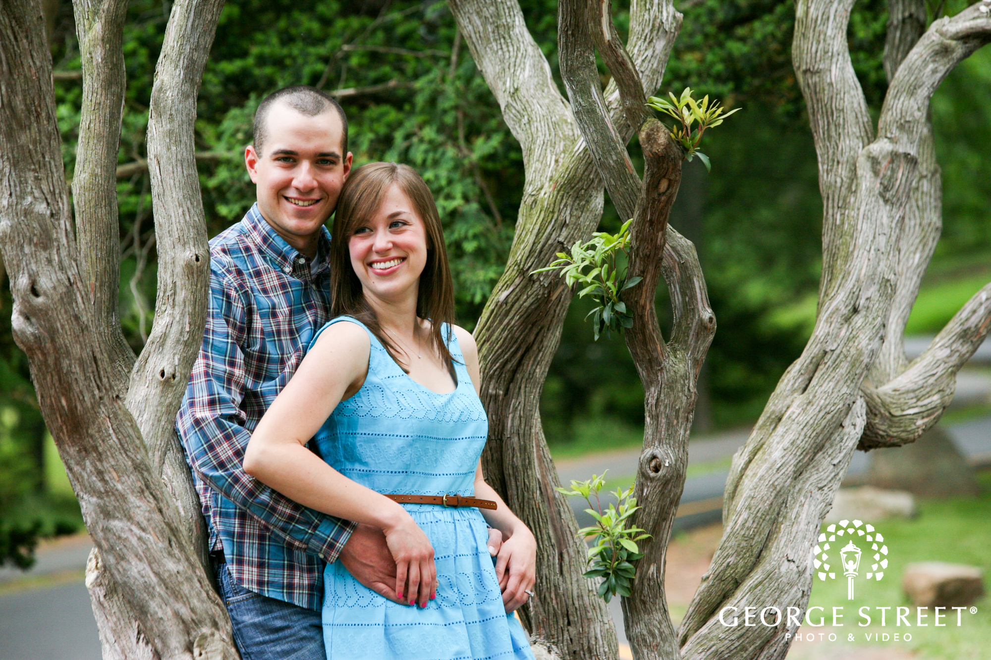 couple sitting in tree summer engagement portrait
