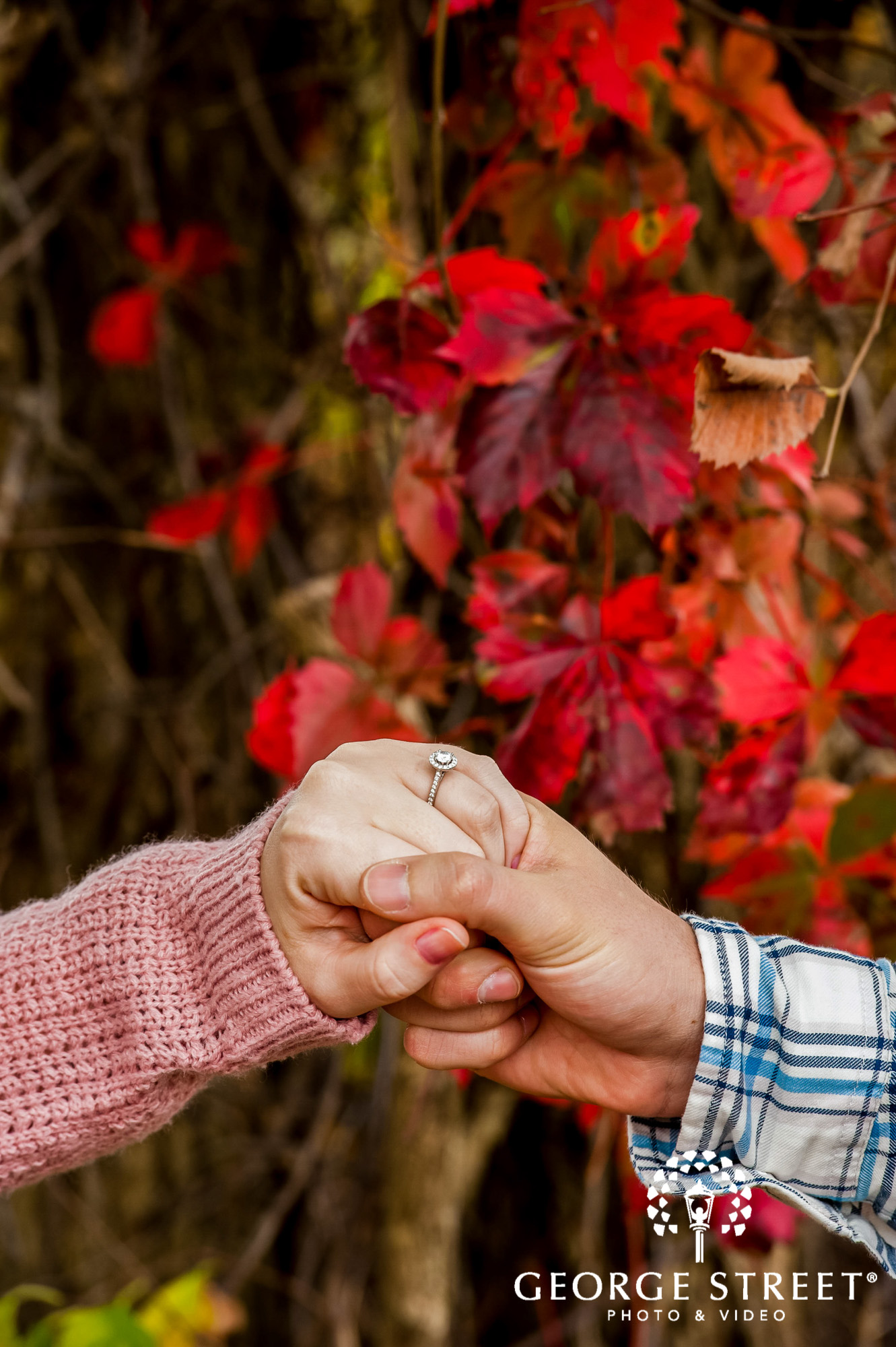 lyman orchards autumn ring hartford engagement photography