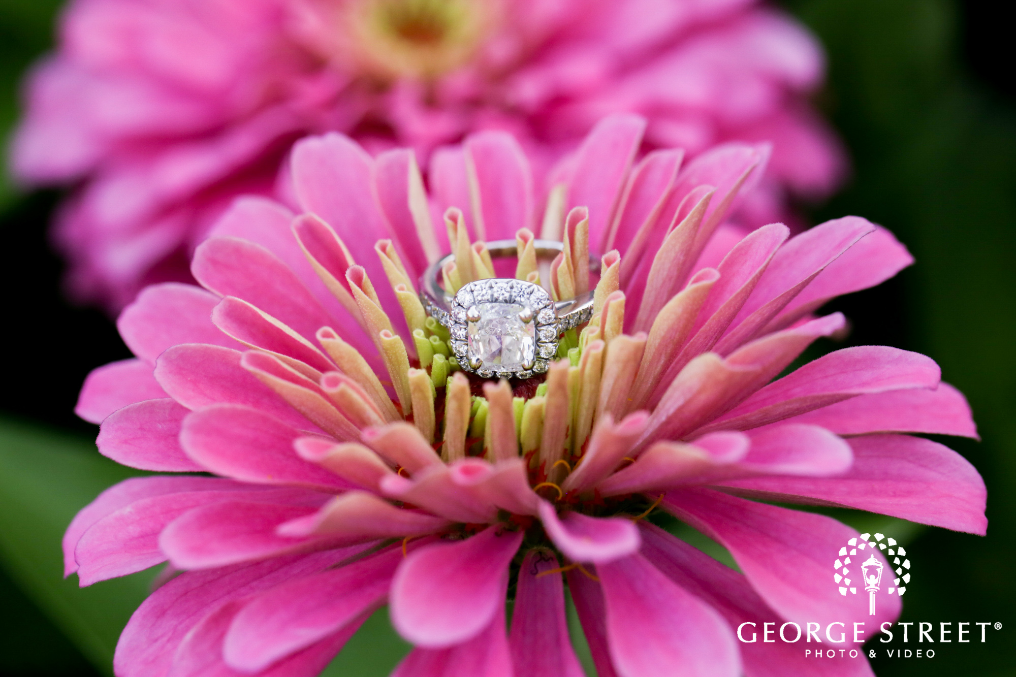 beautiful outdoor longwood gardens engagement portrait session ring detail