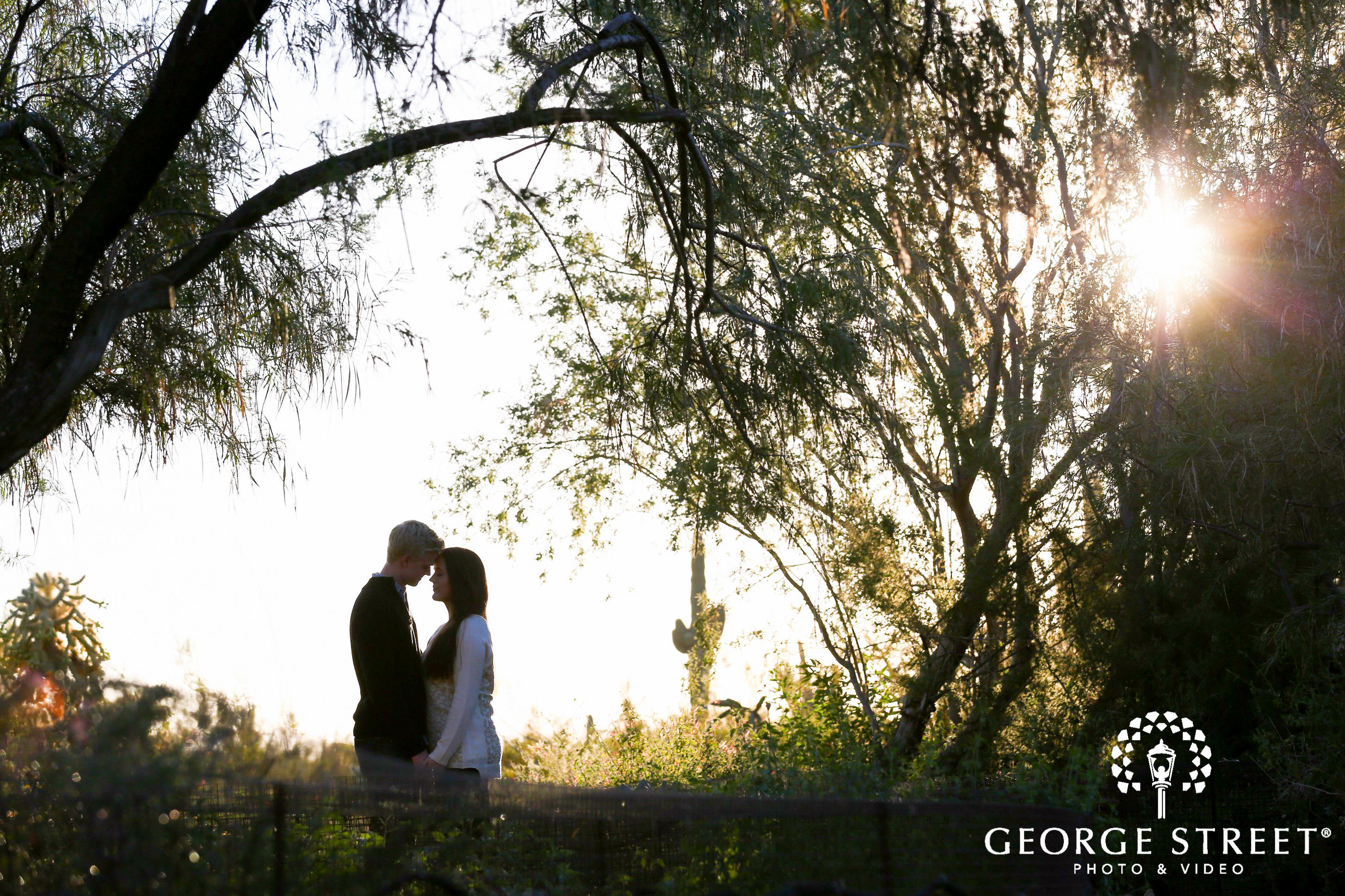Desert Botanical Garden Engagement Photography George